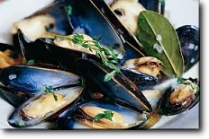 Mussels in Pernod